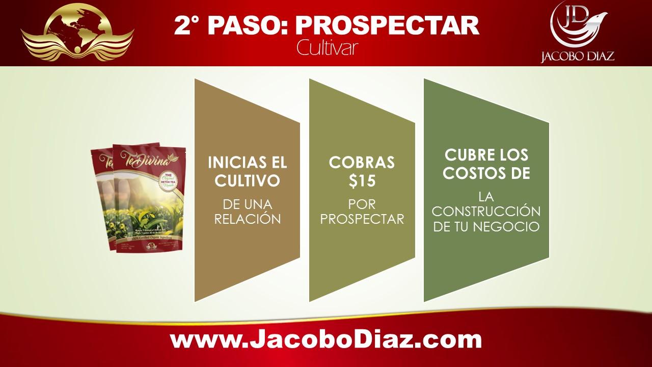 5 PASOS DEL EXITO DE ARMAND PUYOLT: Paso 2 Prospecto