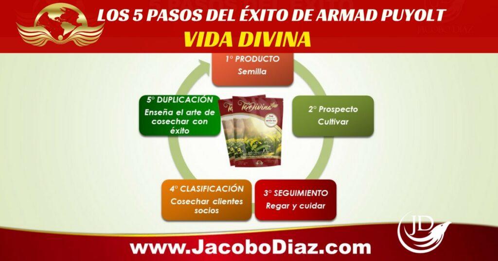5 PASOS DEL EXITO DE ARMAND PUYOLT